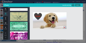 design with Canva, publish to social media