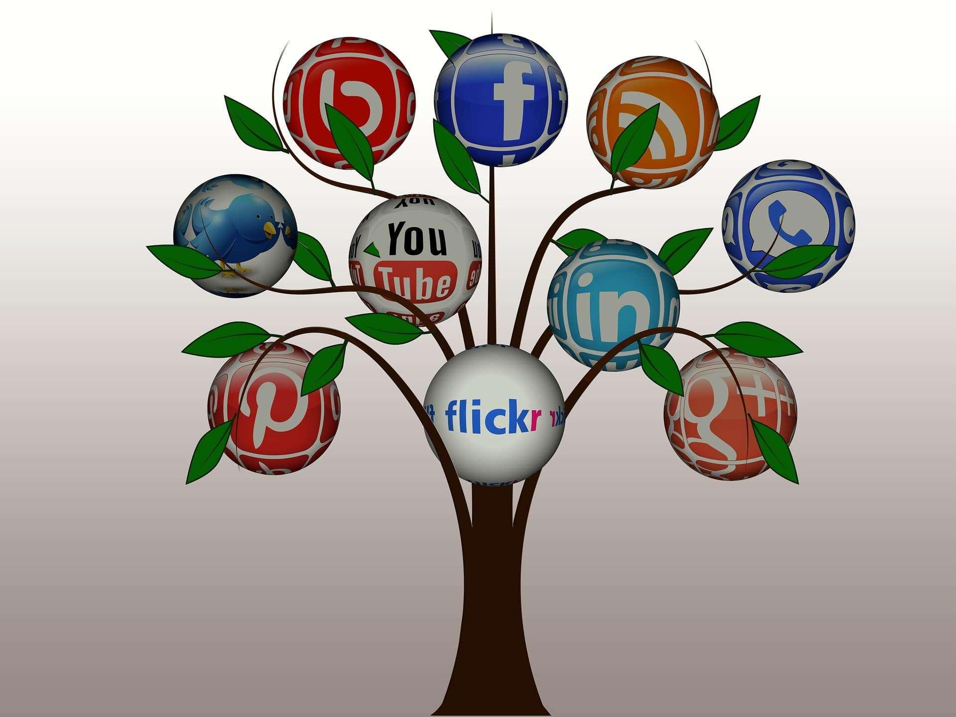 Social Media Marketing ROI | Tree of Social Media | eClincher