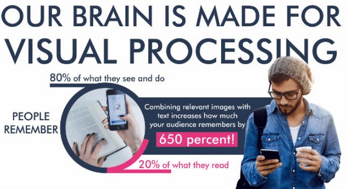Instagram Marketing for Business Human Brain