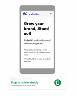 e-clincher mobile friendly test