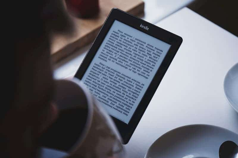 person reading ebook on kindle